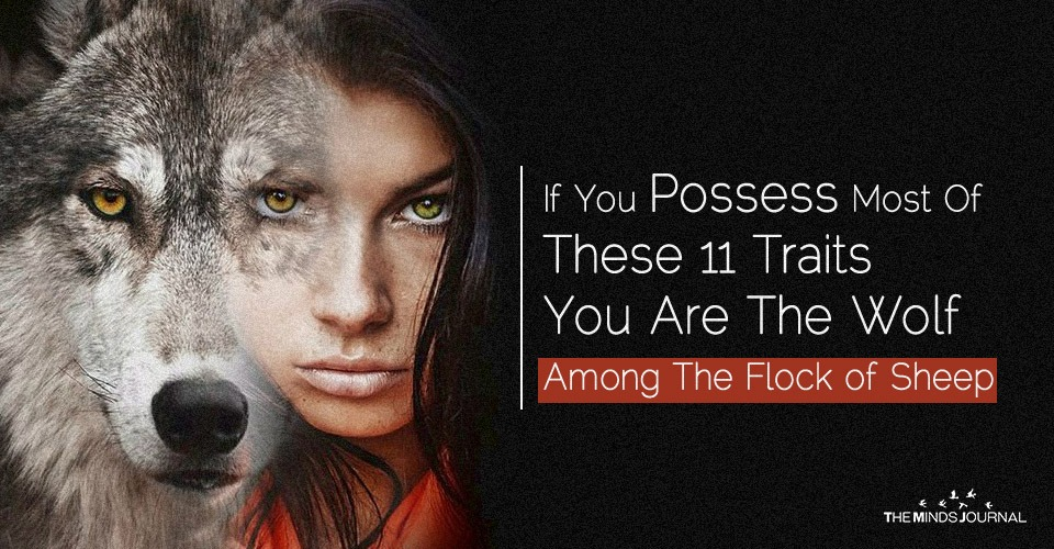 If You Possess Most of These 11 Traits You Are The Wolf Among The Flock Of Sheep