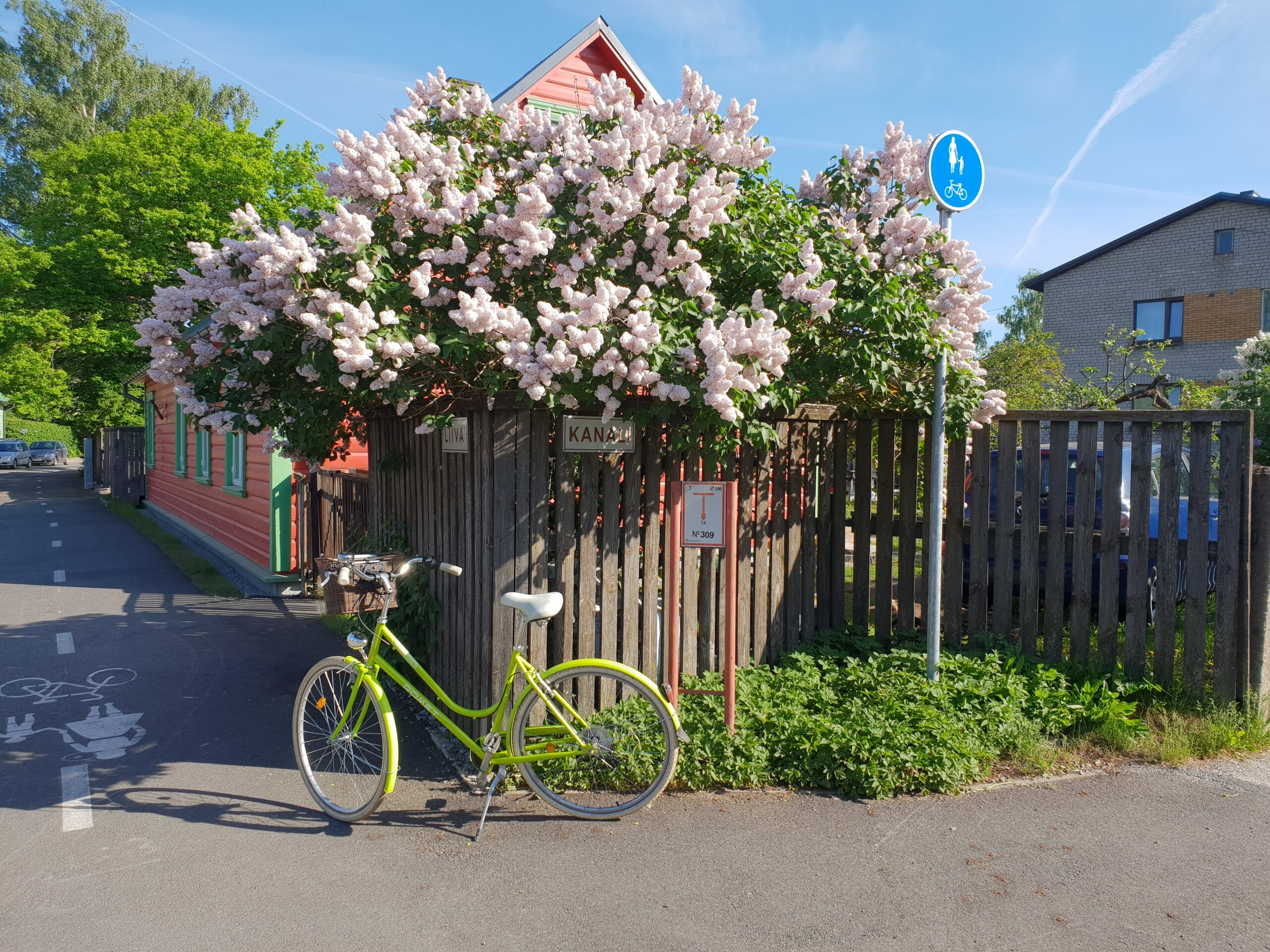 Green Bicycle in Parnu_Errit Kuldkepp_Positively Inspiring Lifestyle_Spring 2019 (33)