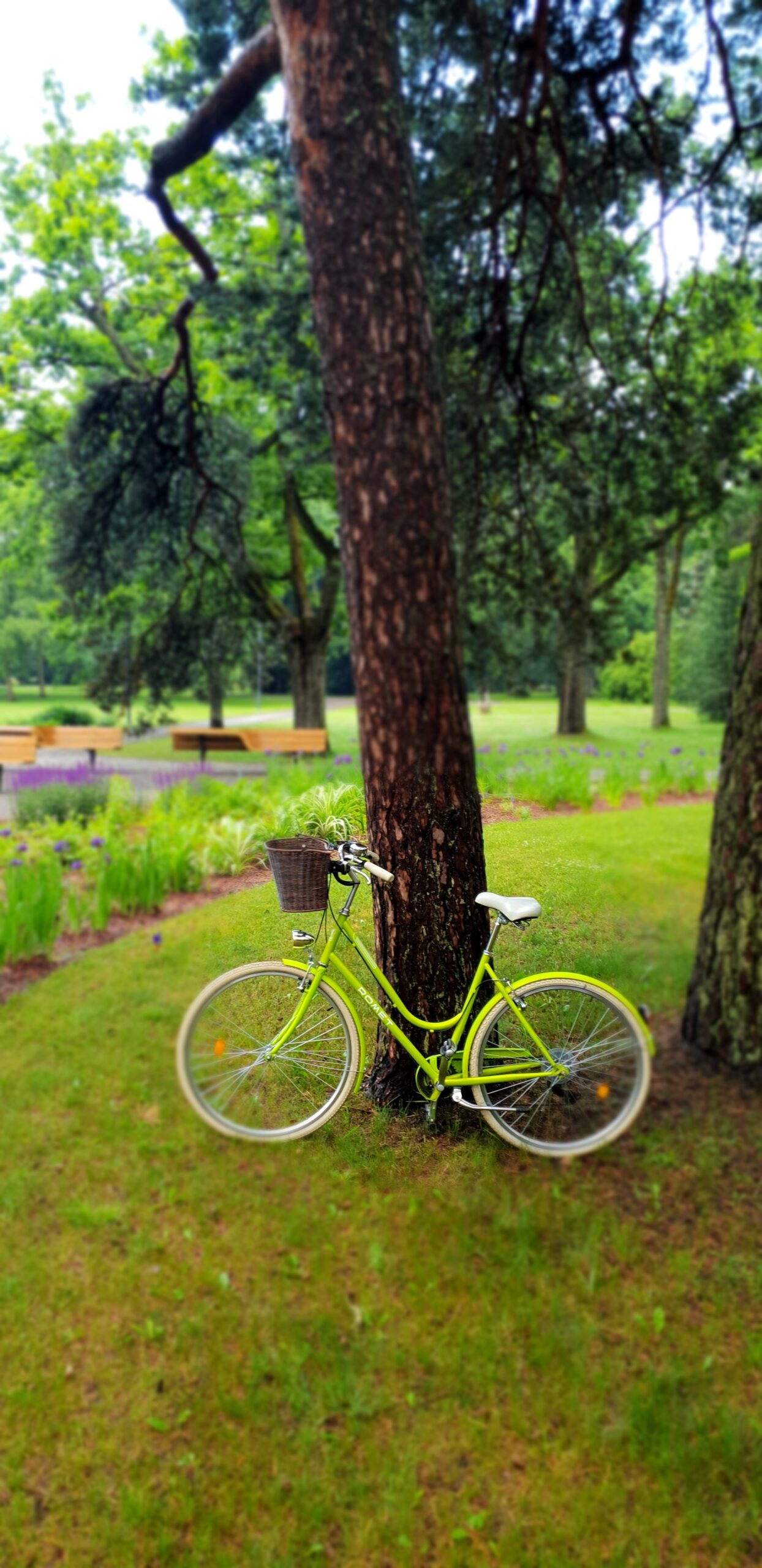 Green Bicycle in Parnu_Errit Kuldkepp_Positively Inspiring Lifestyle_Spring 2019 (50)