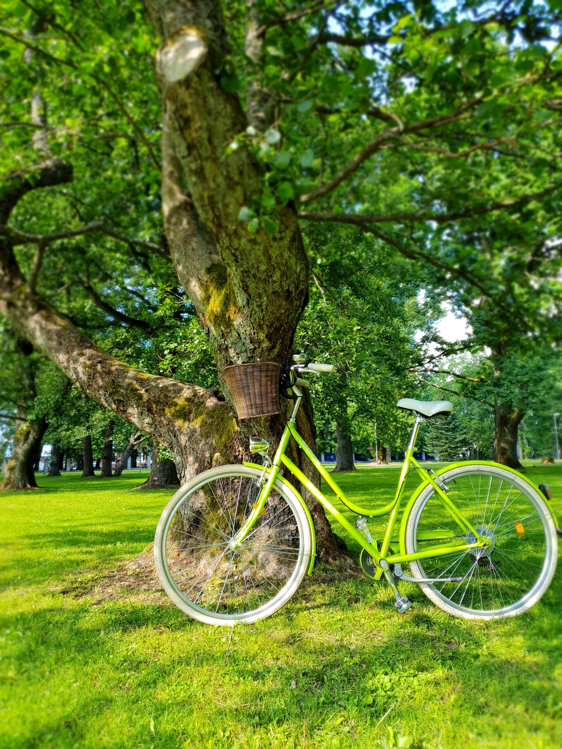 Green Bicycle in Parnu_Errit Kuldkepp_Positively Inspiring Lifestyle_Spring 2019 (56)