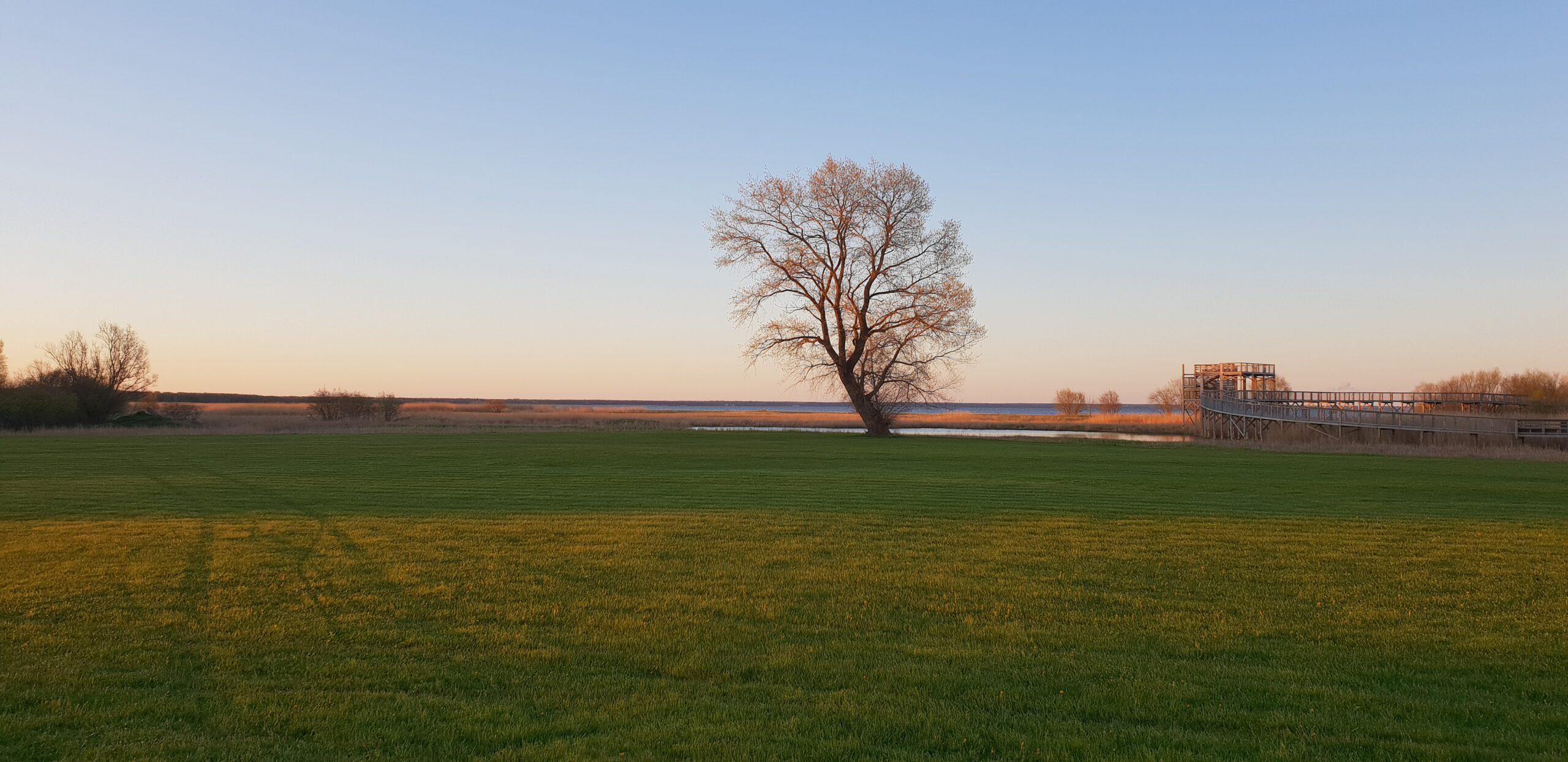 Spring in Parnu_ Errit Kuldkepp_Positively Inspiring Lifestyle_2020 (10)