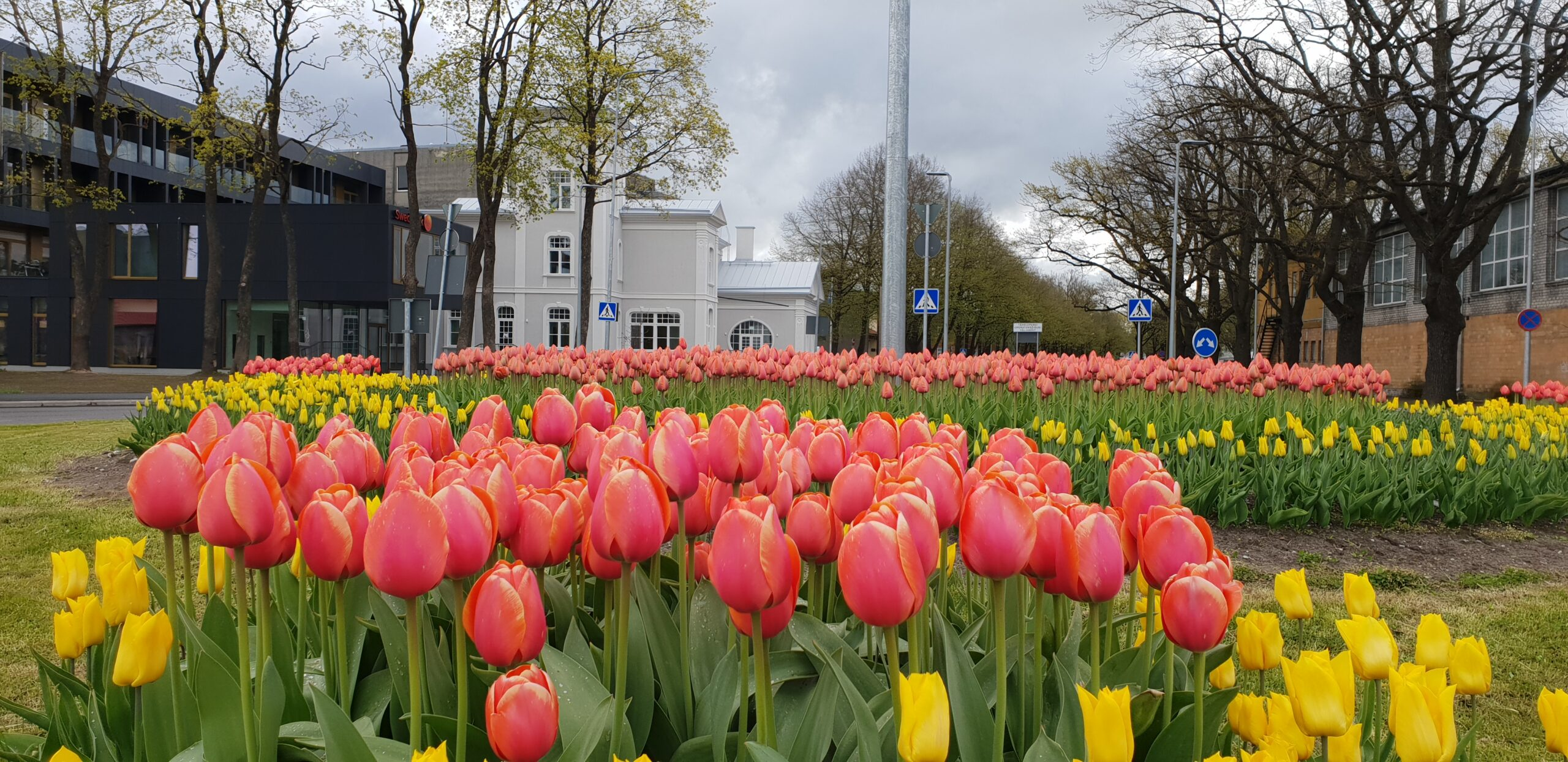 Spring in Parnu_ Errit Kuldkepp_Positively Inspiring Lifestyle_2020 (32)