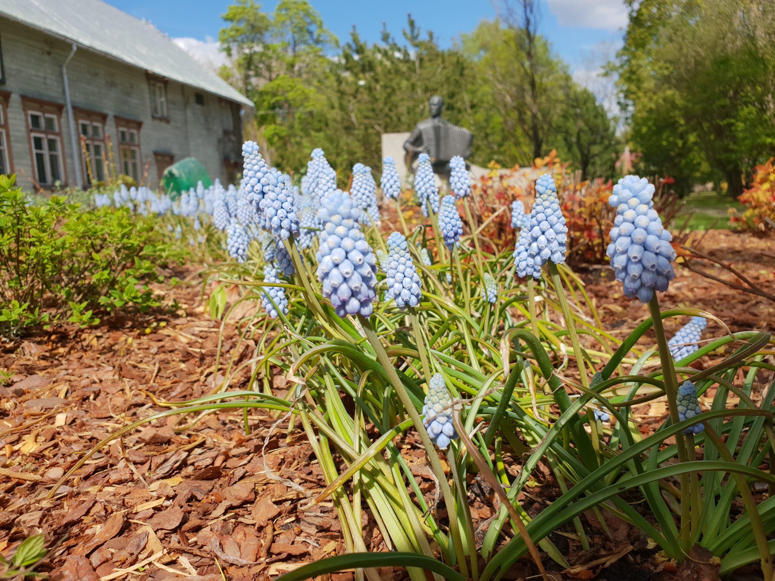 Spring in Parnu_Errit Kuldkepp_Positively Inspiring Lifestyle_2019 (63)