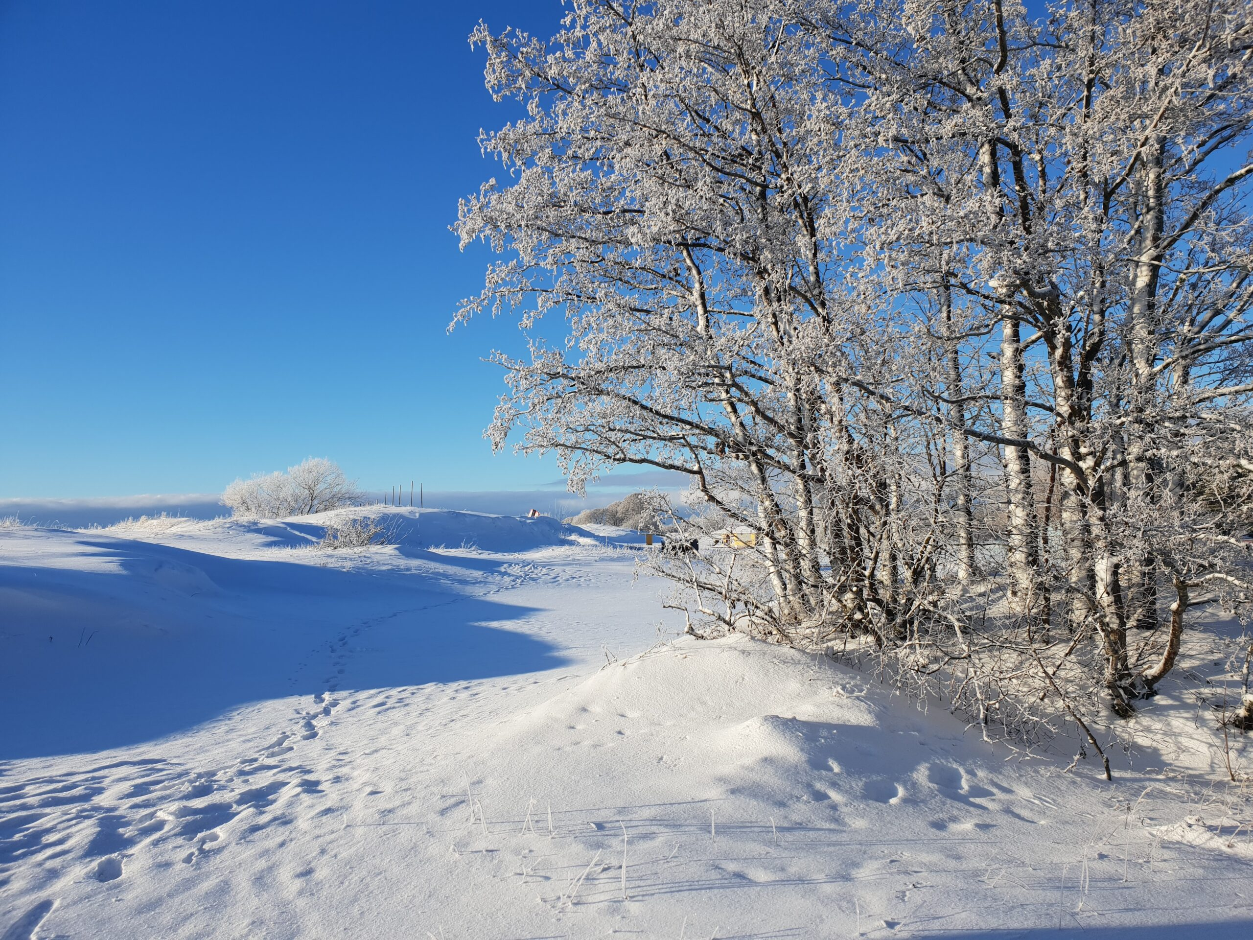 Winter in Parnu_Errit Kuldkepp_Positively Inspiring Lifestyle_2019 (61)